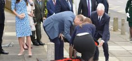 Prince William Helped an Essex Dignitary After He Fell (Video)