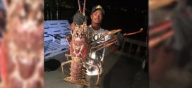 A 14-Pound Lobster? Bermuda Boat Reels In Impressive Catch (Photos)