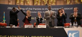 Historic Amendment to Montreal Protocol Adopted in Kigali, Report