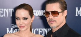 Brad Pitt seeks joint child custody with Angelina Jolie, Report