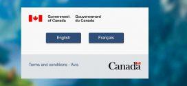 Canada's immigration site just crashed, Report