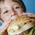 High-fat diet disrupts brain maturation, finds new research
