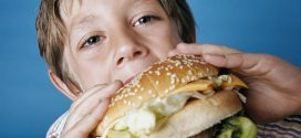 High-fat diet disrupts brain maturation, finds new study