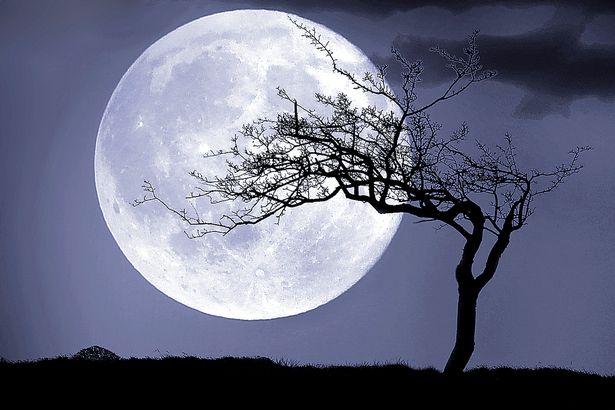 nasa night sky mezza luna - photo #36