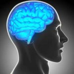 Magnet Study: Stimulating the brain can bring back forgotten short-term memories