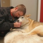Red Deer Man Punches Cougar In The Face To Save his dog
