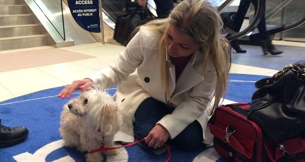 Vancouver Woman Reunites With Dog After Three Years Apart (Video)