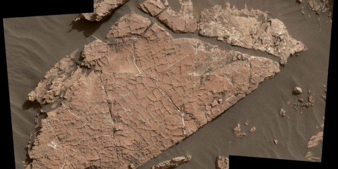 Curiosity Mars rover studies possible mud cracks
