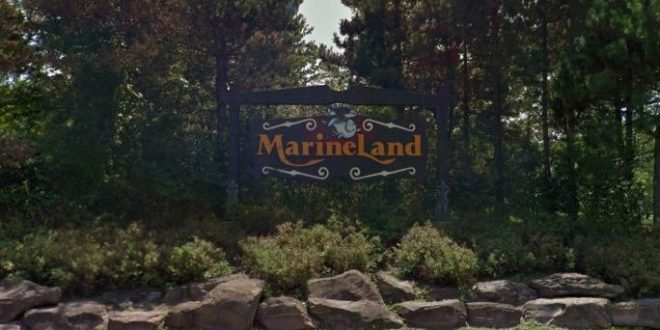 Marineland charged with six new counts of animal cruelty