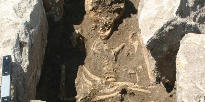 Researchers unearth infection evidence in 13th-century Troy bones