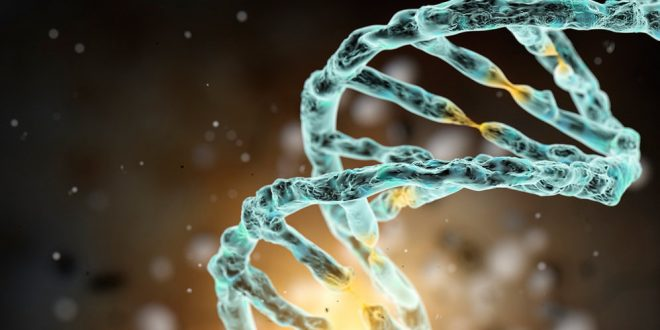 "Scientists develop new system to perform precise ""surgery"" on the human genome"