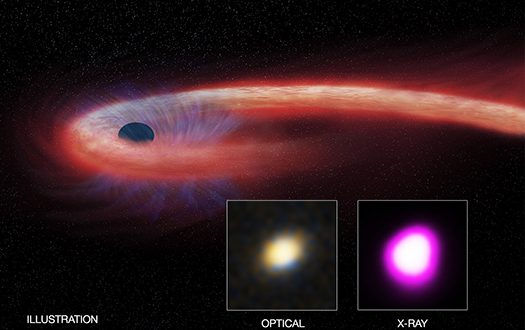 Black Hole Feeds on Star for a Decade, Says New Research
