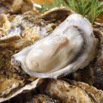 British Columbia oysters linked to recent gastrointestinal illness cases