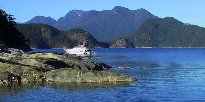 Howe Sound showing recovery, Vancouver Aquarium report finds