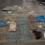 Sick Whale Found To Have THIRTY Plastic Bags Blocking Its Stomach (Photo)