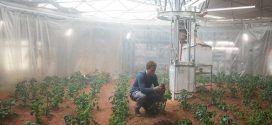 Life On Mars: Astronauts Can Grow Potatoes in Martian Soil (research)