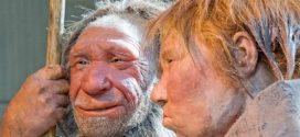 Neanderthal DNA reveals real paleo diet (Research)