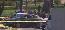 US Woman crashes into police cruiser outside the US Capitol