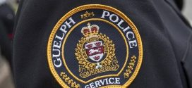 Police: Resident of Guelph apartment building facing animal cruelty charge
