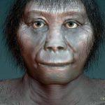Researchers debunk theory that hobbits were man's cousin