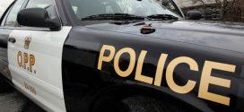 Pedestrian killed on Highway 403 in Hamilton, Report