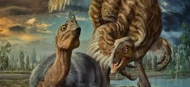 Smuggled dino eggs gave birth to 'baby dragons', says new research