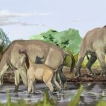 Researchers have uncovered the DNA of Ice age animals
