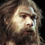 Scientists shed light on Neanderthals' legacy in humans