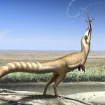 This Dinosaur Had a 'Bandit Mask' Like a Raccoon, Researchers Say