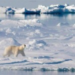 Canada to file claim to expand its Arctic seafloor boundaries