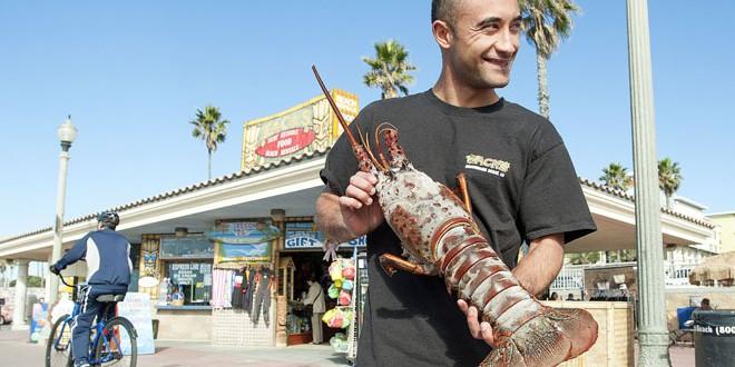Man catches 18 pound lobster (PHOTO – VIDEO)
