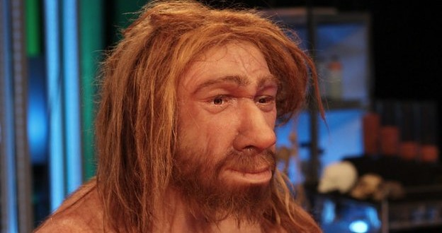 Neanderthals capable of complex speech : Says Study