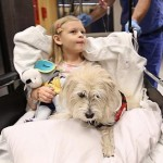 Dog helps docs in Duke surgery