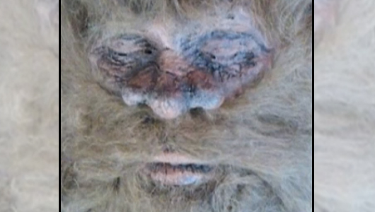 Rick Dyer: Hunter Says Photo Proves He Shot Bigfoot