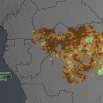 Study Finds Less Green in the Congo Rain Forest
