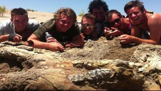 Bachelor party finds rare mastodon fossil (Video)