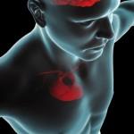 Adults Can Undo Heart Disease Risk, Study