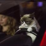 Grumpy Cat movie trailer : Best Holiday Movie Ever (Video)