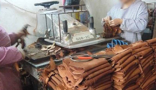 Dog skins turned into leather in China (Video Viral)