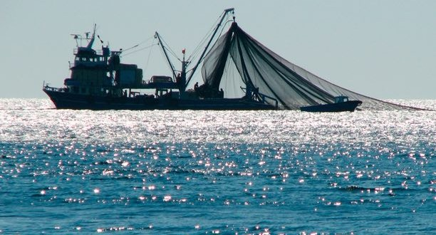 Scientists propose high seas fishing moratorium