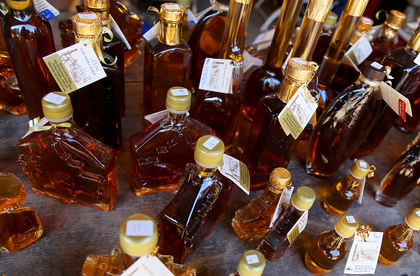 Scientists say maple syrup could help fight bacterial infections