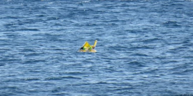 Melda Ilgin: Baby floats 1km out to sea after family forgets about her