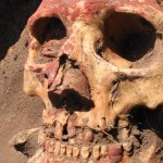 Bronze Age plague wasn't spread by fleas, DNA study shows