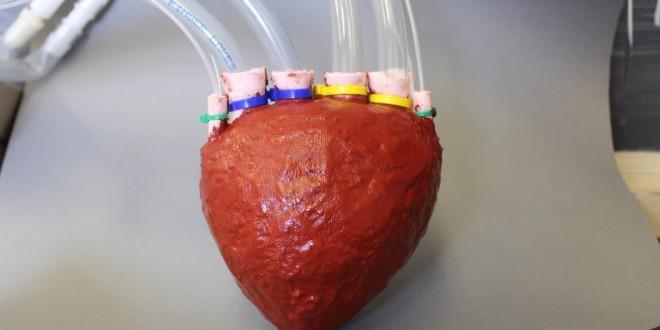 Scientists develop artificial 'foam' heart