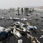 FlyDubai crash: Moment FZ981 goes down caught on CCTV (Video)