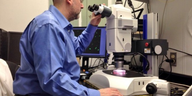 Graham Dellaire: Halifax researcher develops technique for enhancing gene therapy