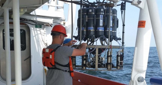 Average 'Dead Zone' for Gulf of Mexico Predicted, Researchers Say