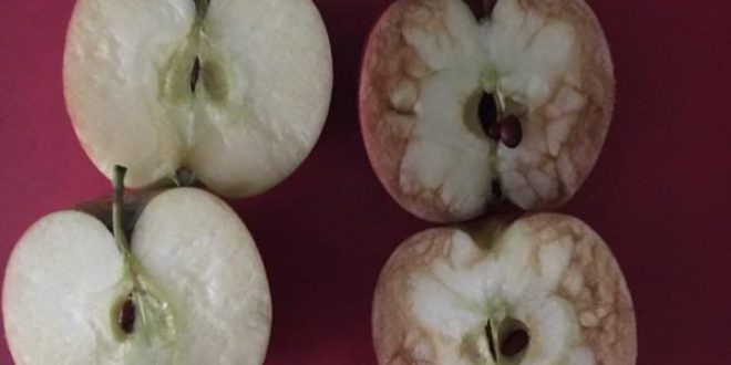 UK Teacher uses apples to demonstrate effects of bullying