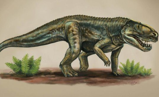 New reptile species from 212 million years ago (research)