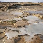 Researchers seek holy grail of climate change in Oman's hills